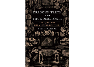 Dragon's teeth and thunderstones: the quest for the meaning of fossils
