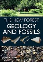 The New Forest: Geology and Fossils