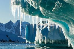Climate change in the geological record